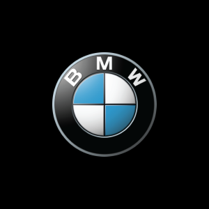 BMW Financial Logo