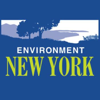 Environment New York Logo