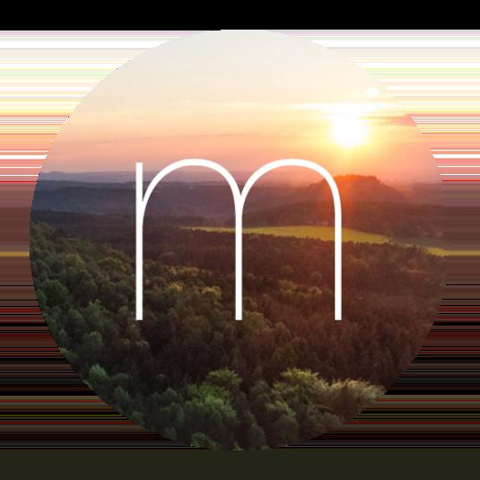 Momentum Dash Logo