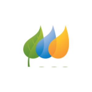 NYSEG Logo