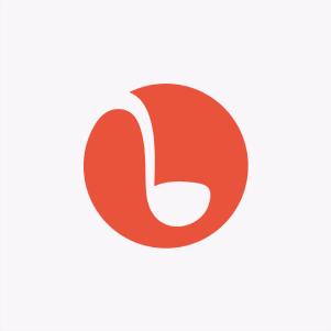 Punchbowl Logo