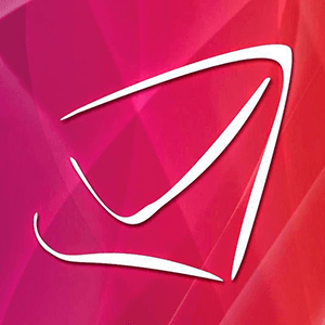 Send Out Cards Logo